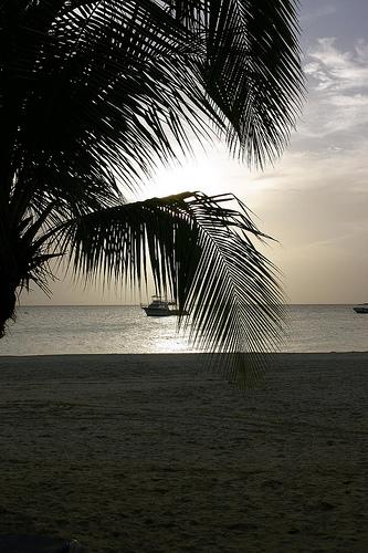 jamaica-resort.jpg